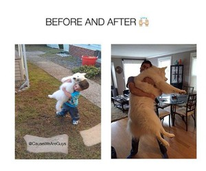 Best, dogs, and Relationship image