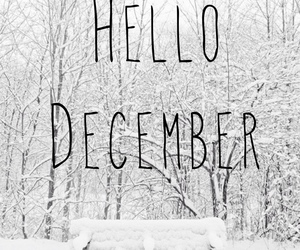 winter, hello december, and christmas image
