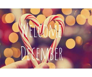 christmas, december, and welcome image