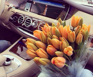 flowers, car, and tulips image