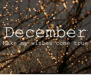 december, fun, and wish image