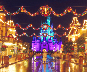 christmas, light, and disneyland image