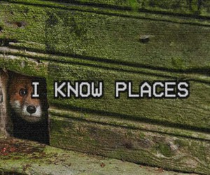 1989, Taylor Swift, and i know places image