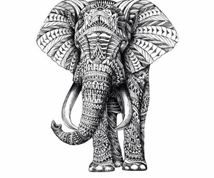 elephant, black and white, and drawing image