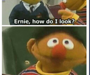 bert and ernie, funny, and tumblr image