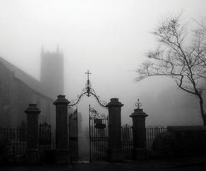 black and white, dark, and cemetery image