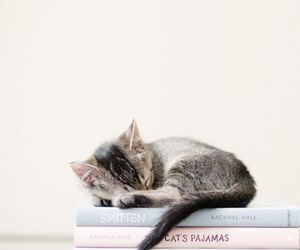 book, colours, and cat image