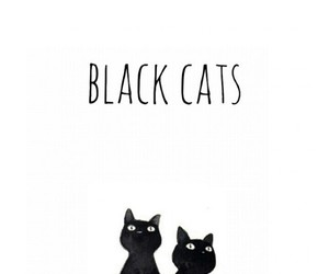 cat, black, and love image