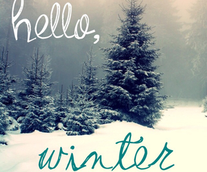 december and winter image