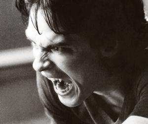 vampire, the vampire diaries, and damon salvatore image