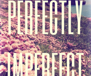 perfect, imperfect, and quote image