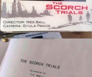 the scorch trials and dylan o'brien image