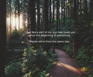 quote, quotes, and trail image