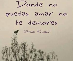 frases, Frida Khalo, and Frida image