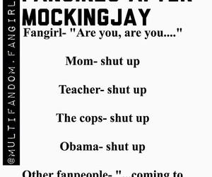 fandom and mockingjay image