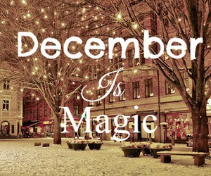 december, magic, and tree image