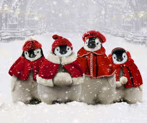 christmas, penguin, and snow image