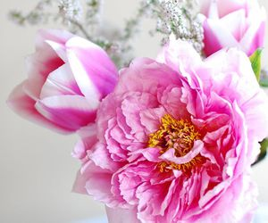 beautiful, bouquets, and flores image