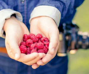 fruit, photography, and camera image