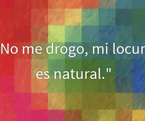 frase, multicolor, and natural image