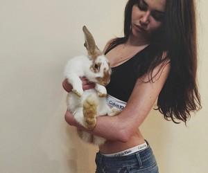 rabbit and 🐰 image