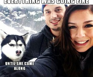 couple, doggy, and funny image