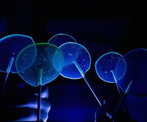 lights, lollipops, and remarkable image