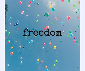 free, happiness, and freedom image
