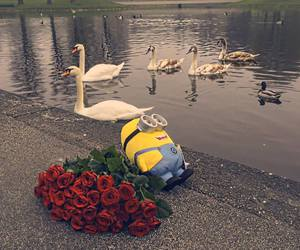 ducks, flowers, and lake image