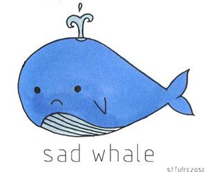 sad whale image