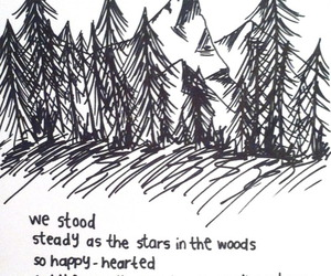 quotes, forest, and stars image