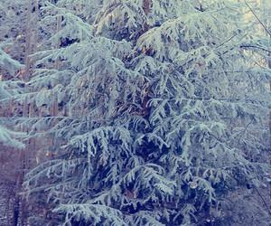 alternative, indie, and snow image