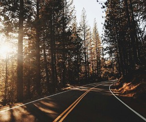 travel, beautiful, and road image