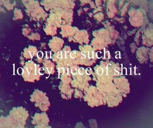 shit, quote, and flowers image