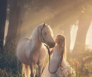 horse and fantasy image
