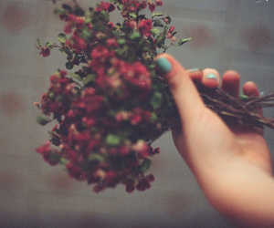 flowers, vintage, and red image