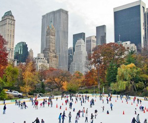 Central Park, new york, and snow image
