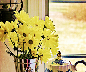 antique, beautiful, and daisy image
