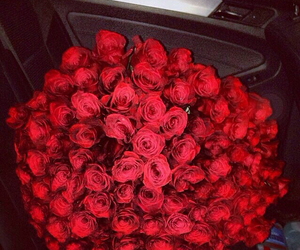 beautiful, roses, and couples image