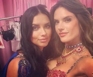 Adriana Lima, Victoria's Secret, and alessandra ambrosio image