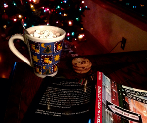 book, comfy, and hot cocoa image