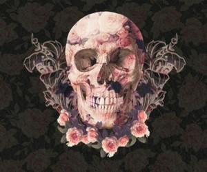 skull, wallpaper, and rose image
