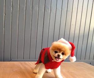 cute, boo, and christmas image
