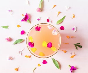 art, drink, and floral image
