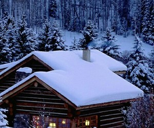 cabin, nature, and snow image