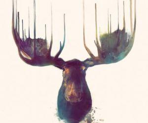 art, moose, and animal image
