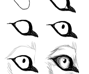 drawing and wolf eyes image