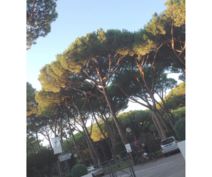 italia, nice, and italy image