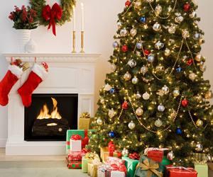 christmas, present, and tree image