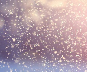 snow and header image